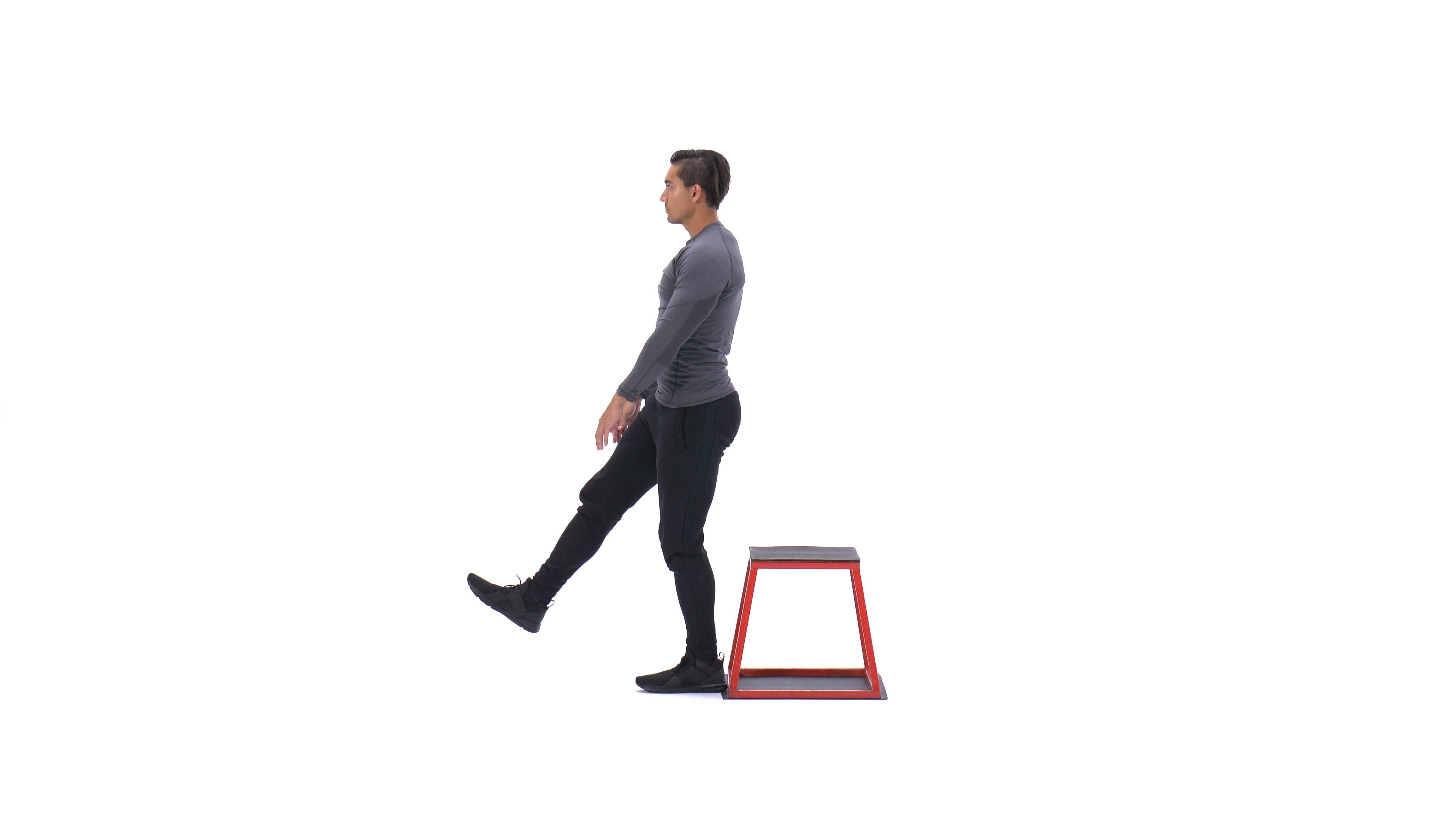 Single-leg box squat image