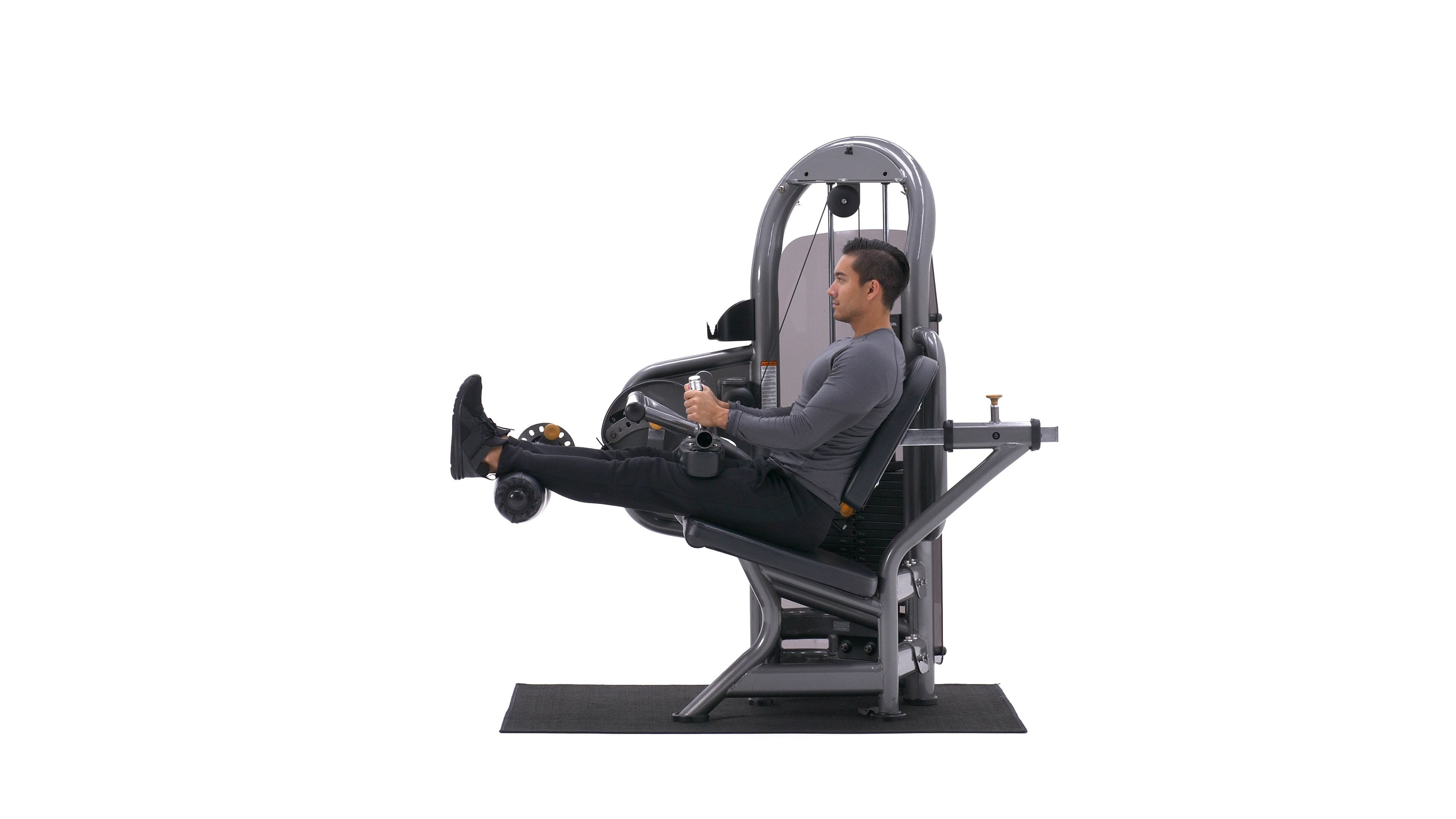 Seated Leg Curl image