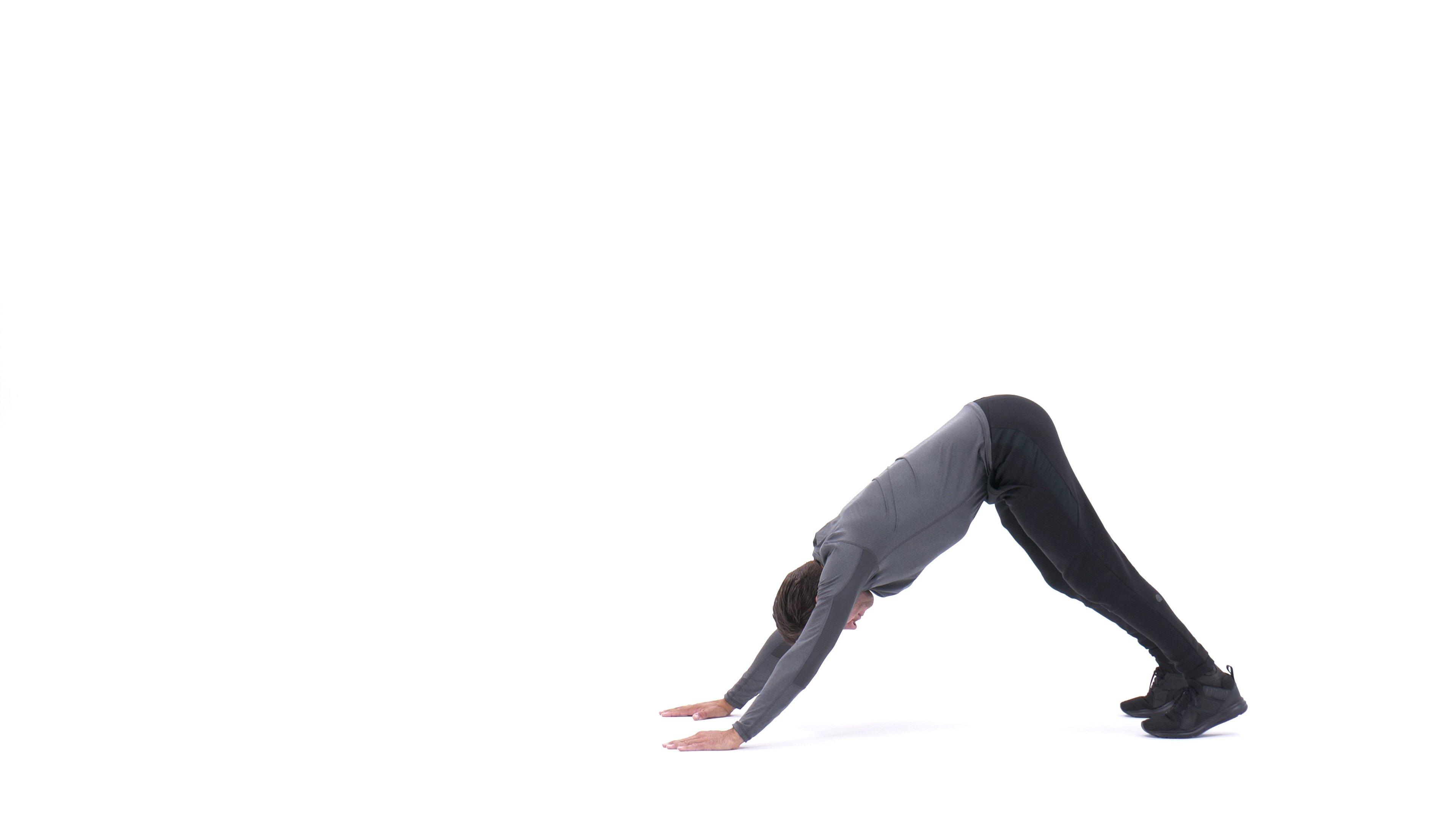 Judo push-up image