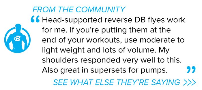 Rear delt fly forum pullquote