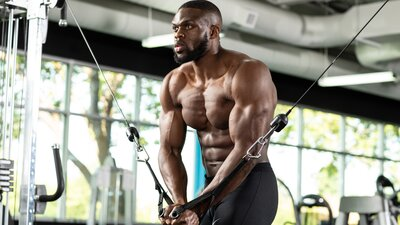 What Are the Best Chest Programs for Mass?