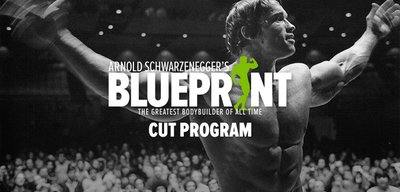 Arnold Schwarzenegger's Blueprint To Cut