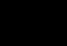 skinny mom black retina logo