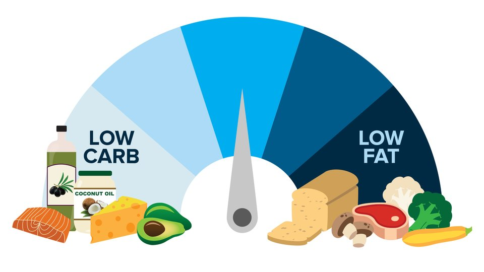 high fat diet low carb