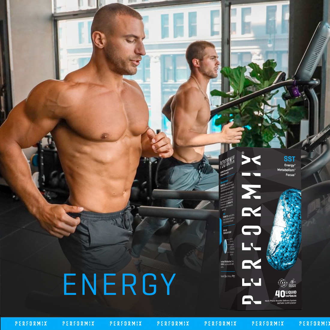 Performix SST Key Ingredients