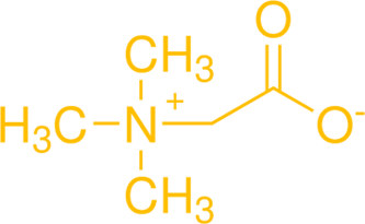 Betaine Anhydrous Molecule