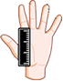 hand with a ruler