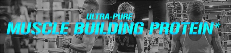 Ultra-pure muscle building protein