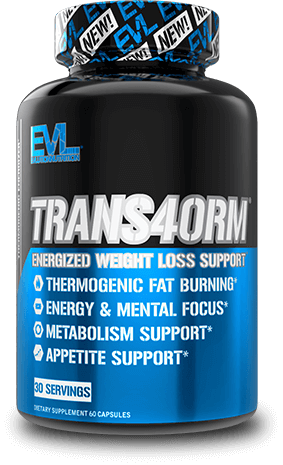 TRANS4ORM Container