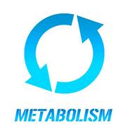 Metabolism*