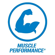 Muscle Performance*