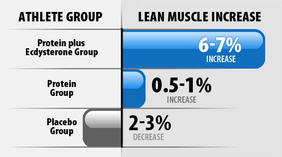 Lean Muscle Increase Graph
