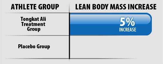 Lean Body Mass Increase Graph