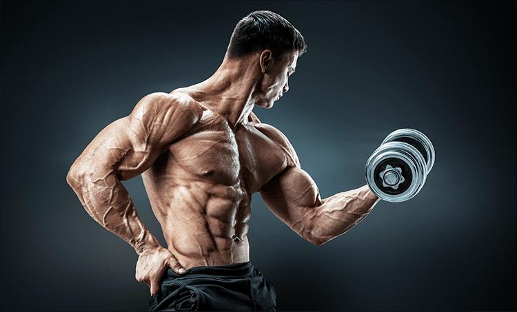 MuscleMeds Athlete
