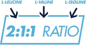 2:1:1 Ratio of L-Leucine to L-Valine and L-Isoleucine