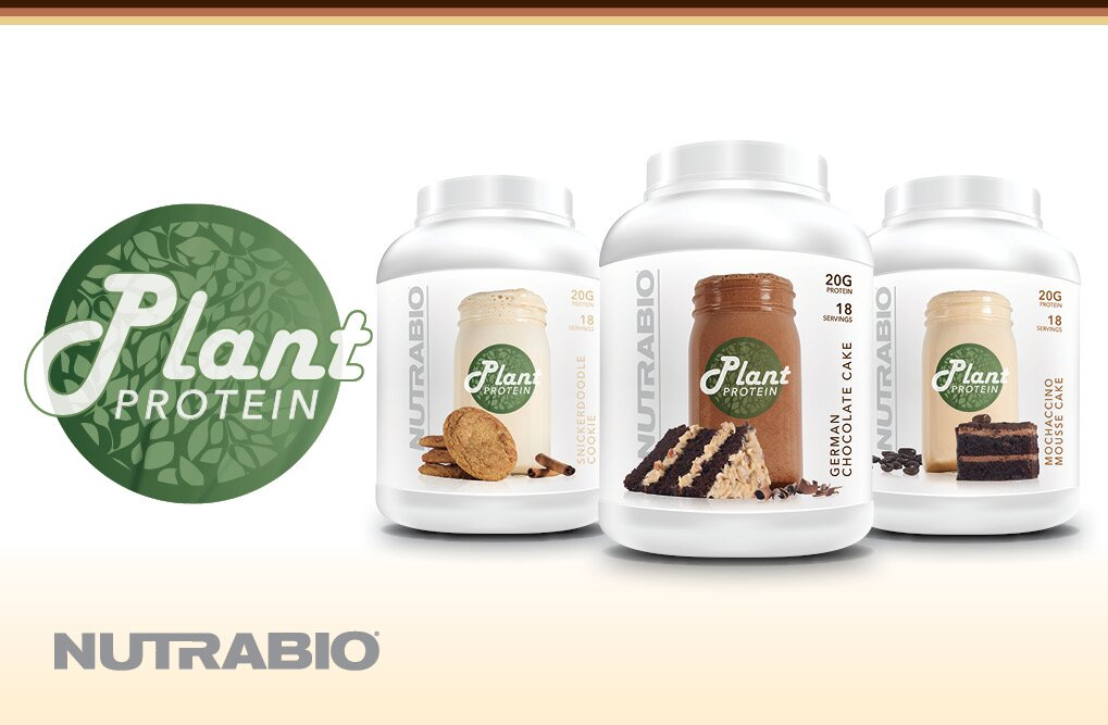 NutraBio Plant Protein - Key Ingredients