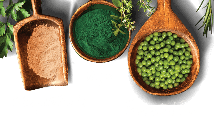 Mesquite Powder, Algae, Fermented Pea