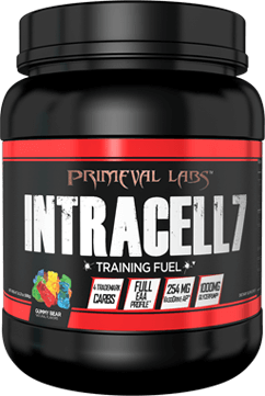 Intracell 7 Black Container