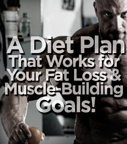 Muscle Diet | Diet Plans for Lean Muscle Building